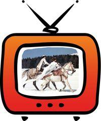 TV Aschenb